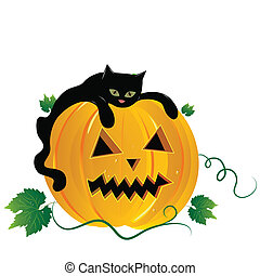 Cat and pumpkin