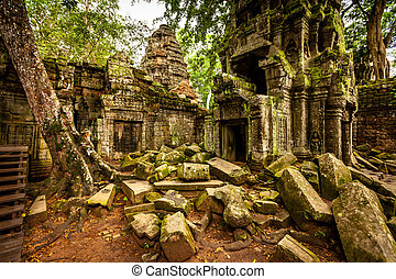 Tree of Ta Prohm, Angkor Wat - Trees growing out the ruin of...
