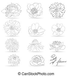 Set of flowers, monochrome illustration