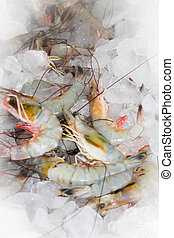 Shrimp fresh from the Florida Gulf Coast