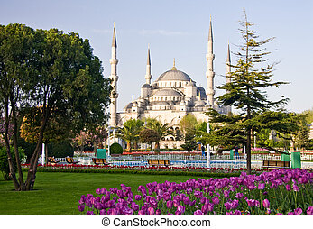 Blue Mosque 2 - Blue Mosque in Istanbul with tulips in the...