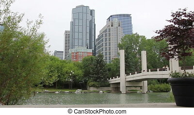 downtown Calgary pond - This is a peaceful shot of downtown...