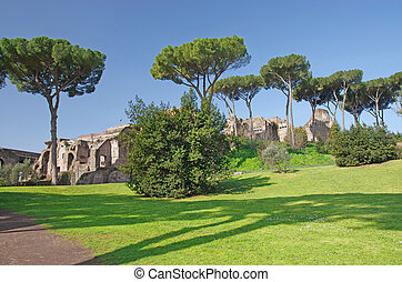 Palatine hill in Rome with Roman forum ruins