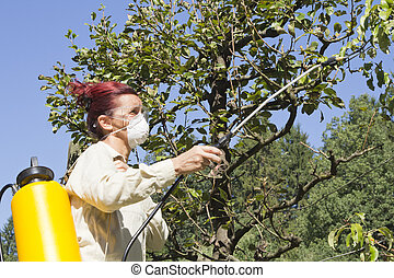 Using chemicals in the garden - Woman gardener using a...