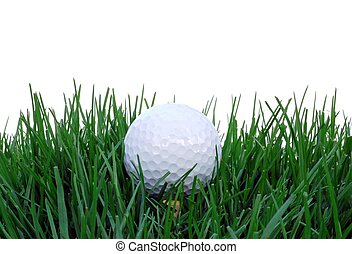 In The Rough - Golf ball setting in the tall grass