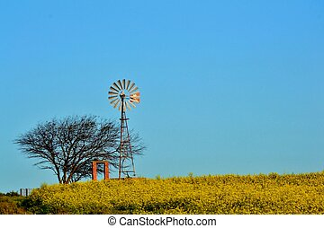 windmill water pump - Landscape of windmill water pump in...