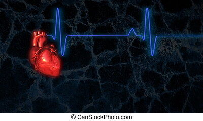 Beating heart with EKG Loopable - A red pulsating heart...