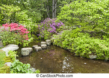 Stepping Stones to Cross a Garden Stream - stepping stones...
