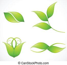 Set of green leaf's images. Vector illustration