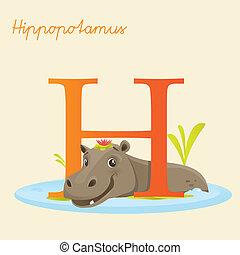 Animal alphabet with hyppopotamus