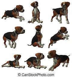 Puppy Hound - 3D Render of an Puppy Hound