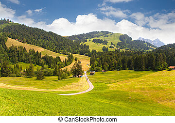 Valley in Switzerland - Beautiful valley in Sattel near Lake...