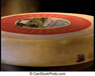 CHEESE spinning bitto