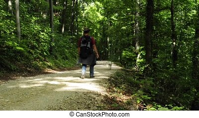 rambling man with dog on a forest path