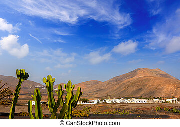 Lanzarote Yaiza with cactus and mountains - Lanzarote Yaiza...