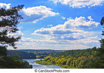 Forest river and a beautiful blue sky with clouds landscape