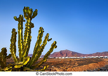 Ajaches mountain in Playa Blanca Lanzarote white houses