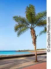 Arrecife Lanzarote Playa del Reducto beach in Canary Islands