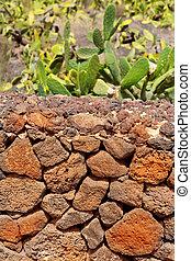 Lanzarote La Guatiza masonry with volcanic stones Canary...