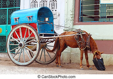 wheels 2 - Handmade indian carriage with horse is waiting...