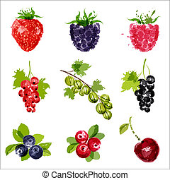 Fruit set  - Set of vector juicy ripe berrys-1. EPS10