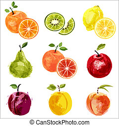 Fruit set  - Set of vector juicy ripe fruits-2. EPS10