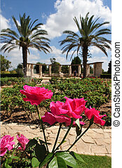 Israel Travel Photos - Zichron Yaakov - Gan HaNadiv ,Garden...