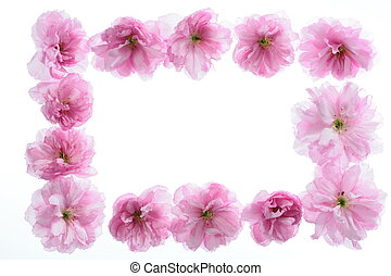 floral frame with space f