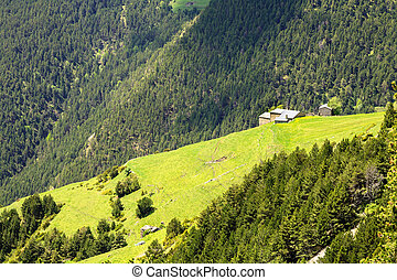 Pyrenees and their the green face - Meadows, forests,...