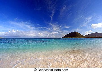 magnífico, playa, Verano