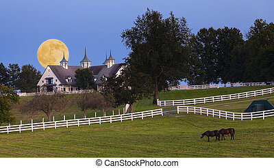 Moonrise at a horse farm - Moonrise over a horse farm in...