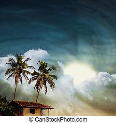grunge palm-7 - grunge palm background