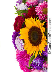 autumn flowers - mixed autumn flowers background isolated on...
