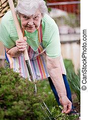 Senior at work in the garden