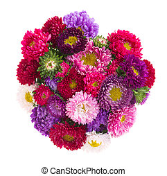 bouquet of aster flowers - bouquet of aster flowers isolated...