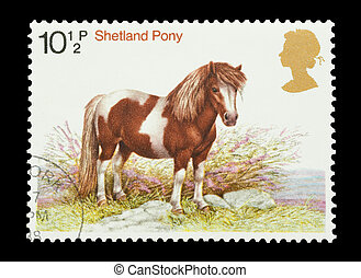 Shetland Pony - Mail stamp printed in the UK featuring a...