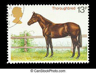 Thoroughbred - Mail stamp printed in the UK featuring a...