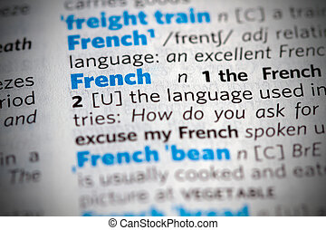 The word French in dictionary
