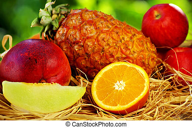 Fruits on green background