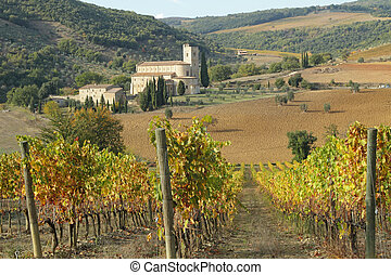 spectacular landscape with autumnal vineyards and Saint...