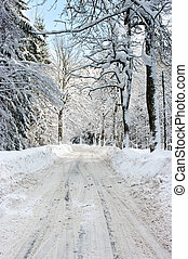 Road during the winter