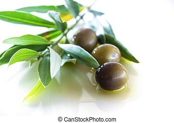 olives and oil with leaves white background light back
