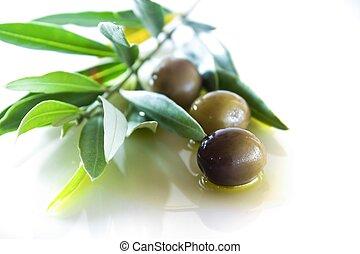 aceitunas, aceite, hojas