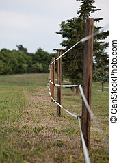 Fenced pasture - Electric fenced pasture on small farm