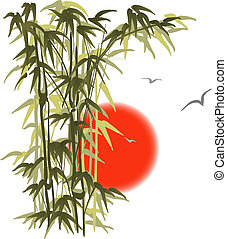 Bamboo on sunset background - Green bamboo on sunset...