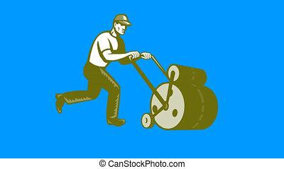 gardener walking pushing lawn rolle
