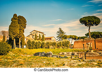 Roman empire ruins on Palatine Hill, Rome, Italy