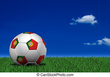 Portuguese soccer ball laying on the grass