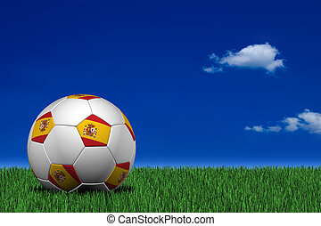 Spanish soccer ball laying on the grass