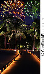 fireworks over the tropical island